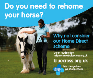 Blue Cross 2020 A (West Yorkshire Horse)