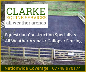 Clarke Equine Services 2019 (West Yorkshire Horse)