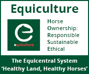 Equiculture 01 (West Yorkshire Horse)