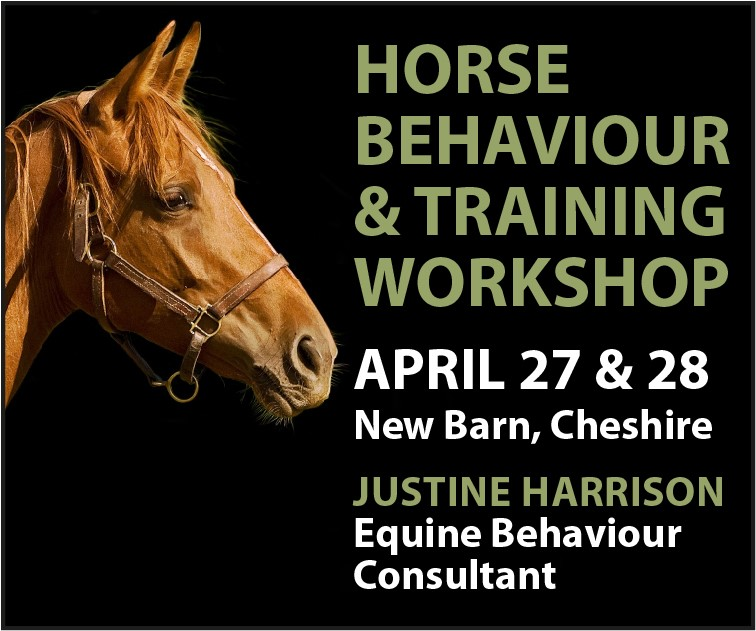 Justine Harrison Workshop April 2019 (West Yorkshire Horse)