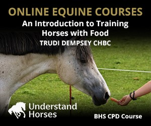 UH - An Introduction To Training Horses With Food (West Yorkshire Horse)