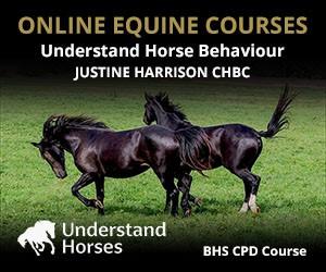 UH - Understand Horse Behaviour (West Yorkshire Horse)