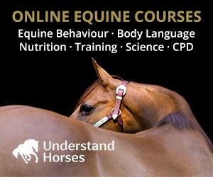 Understand Horses (West Yorkshire Horse)